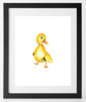 8x10 Baby Animals Duck