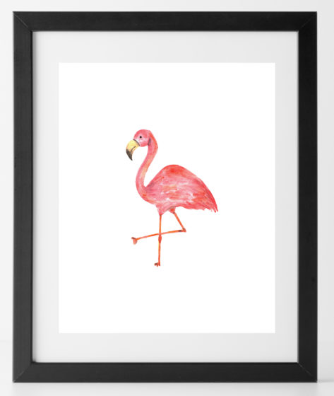 8x10 Baby Animal Flamingo
