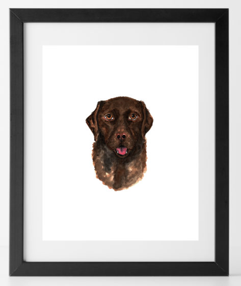 8x10 Chocolate Lab Print Dog