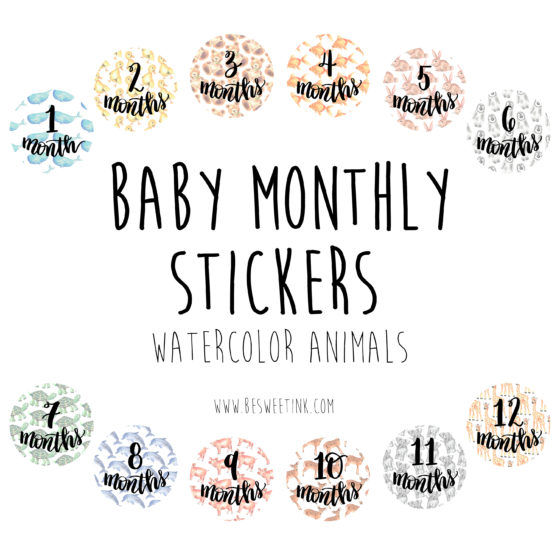 Monthly Baby Stickers